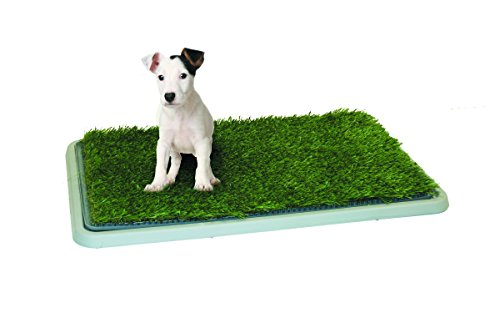 Potty Patch Small Kit (Under 15lbs) - Indoor Dog Litter Box, Puppy Pad, Pet Training (Regular Roll Up)