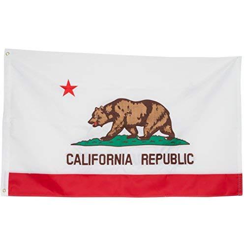 ca bear flag - 2