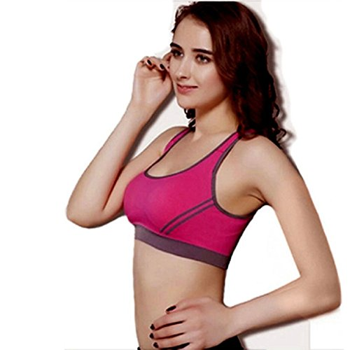 Price comparison product image Sports Yoga Stretch Beautyvan Comfortable Fashion Women Padded Bra Top Athletic Vest Gym Fitness Sports Yoga Stretch (M,  Hot Pink)