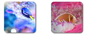 Beautiful fish DIY Coasters Customized by Cases & Mousepads Two coasters are