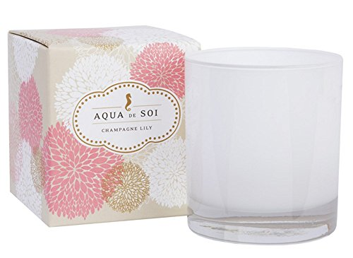 SOI Company The Aqua de SOi 100% Premium Natural Soy Candle, 11 Ounces Boxed Jar, Champagne Lily (Champagne Boxed)