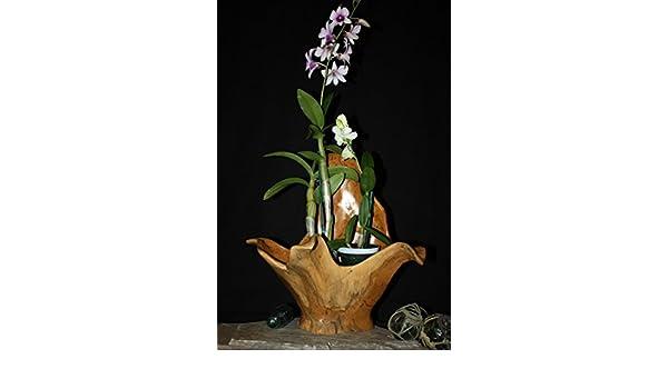 Amazon.com: Wooden Vase Rustic Bowl Sculpture 18