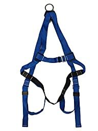 Safety Harness 3 adjustable points with 6\' Shock Energy Lanyard