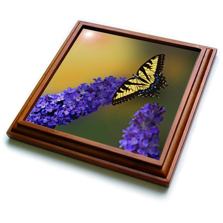 (3dRose trv_217300_1 Yellow Tiger Swallowtail Butterfly and Butterfly Bush Trivet with Ceramic Tile, 8