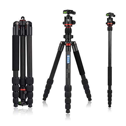 3WE Super Lightweight and Flexible Carbon Fiber DSLR Tripod, 360 Ball Head, 65