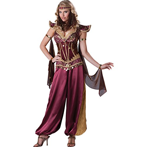 Costumes Women's Desert Jewel Costume, Burgundy/Gold, Large