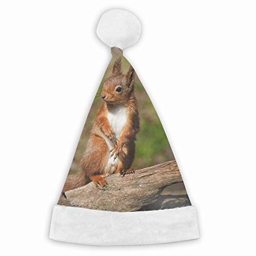 Squirrel Log Legs Velvet Santa Hat with Plush Trim, Two Size Fits Most for Adult's and Child ()