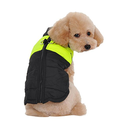 Puppy Clothes,Neartime Winter Warm Clothes for Dogs Padded Waterproof Coat Jacket (S, Green) (Pumpkin Outfit For Dogs)