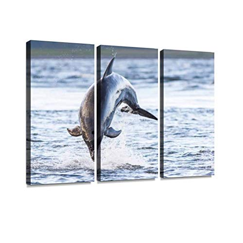 YKing1 Wild Bottlenose Dolphin tursiops truncatus Wall Art Painting Pictures Print On Canvas Stretched & Framed Artworks Modern Hanging Posters Home Decor 3PANEL