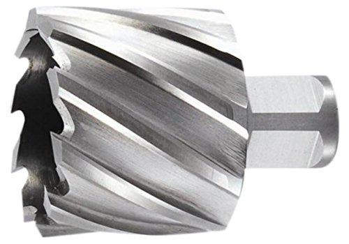 2 Cutting Depth Taipan Abrasives TO-8690 M2 Steel Original Annular Cutter Weldon Shank 1-3//4 Cutting Diameter