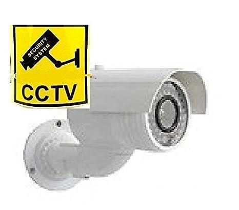 Cámara vigilancia Videovigilancia sintética con cartel ...