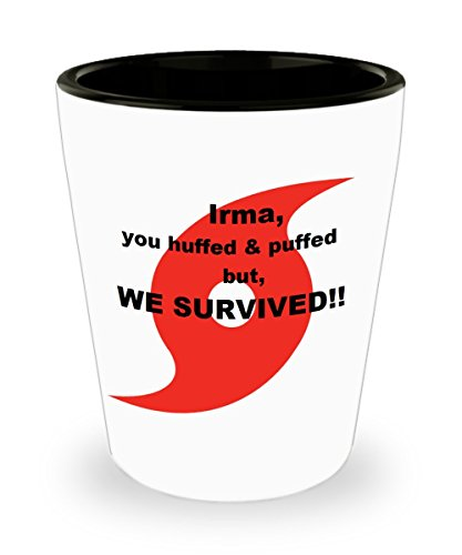 Funny Shot Glass - Hurricane Irma We Survived Ceramic 1.5 oz. Custom Printed Shot Glass Collectible Novelty Funny Gag Gift