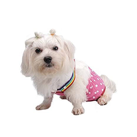 Leayao - Pañales para perros con diseño de lunares, color rojo y negro