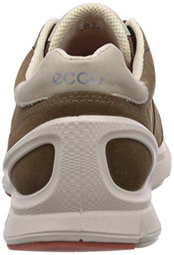 Ecco BiomEvoTrainer - zapatillas de running de cuero hombre marrón - Braun (Birch/Birch/Picante59949)