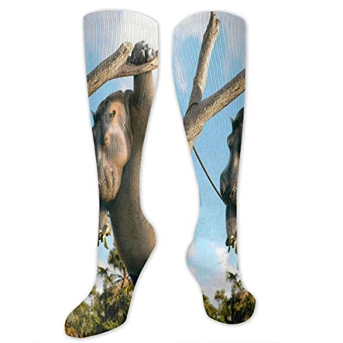 Stretch Socks Hippo Animal Fun Humor Stylish Winter Warmth for Women & Men Flight