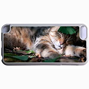 Customized Back Cover Case For iPod Touch 5 Hardshell Case, WHITE Back Cover Design Cat Personalized Unique Case For iPod Touch 5