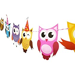 E&L 2 Set of Owl Pal Party Themed Decorations Kit, Birthday Party Supplies, Birthday Party Banner, Set of 10 Pieces Different Colorful Owl Flags With Different Pattern