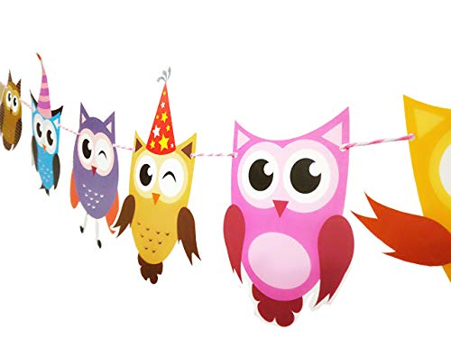E&L 2 Set of Owl Pal Party Themed Decorations Kit, Birthday Party Supplies, Birthday Party Banner, Set of 10 Pieces Different Colorful Owl Flags With Different Pattern -