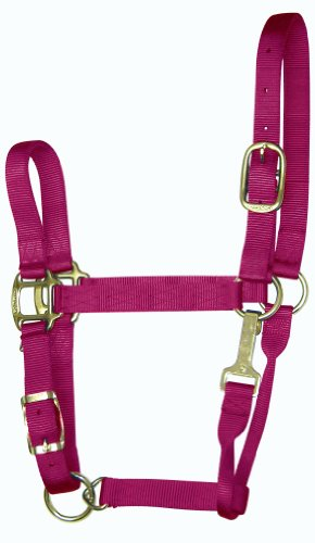 Hamilton 8-11 1 Nylon Adjustable Quality Horse Halter with Snap, Average, for Horses 800 to 1100 lbs., Wine (Arabian Halter)