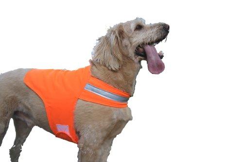 Dog Safety Vest - Dog Not Gone Visibility Products Safety Dog Vest, Size 34, Hunter Orange