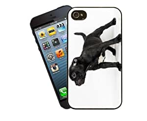 Eclipse Gift Ideas Staffordshire Bull Terrier Phone Case, Design 11 - For Apple iPhone 5 / 5s - Cover