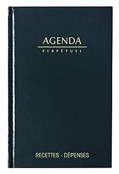 Lecas  Agenda Recettes/Dépenses 1 Page par Jour 14 x 22 cm Année 2019