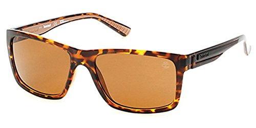 Sunglasses Timberland TB 9087 52H dark havana / brown - Sunglasses Timberland Polarized