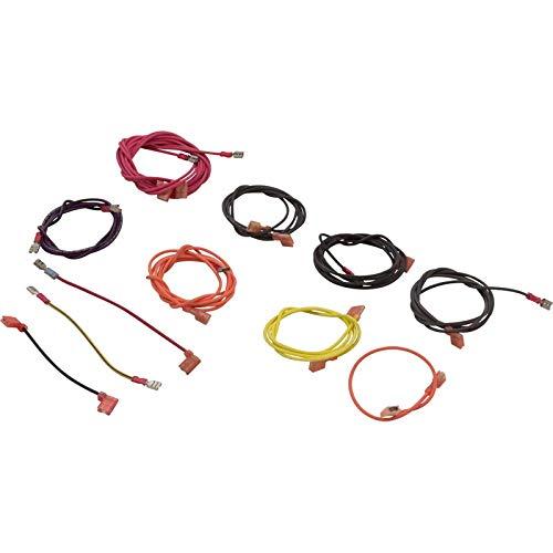 (Raypak 005269F Model R185/R405 Pool & Spa Heater Millivolt Wire Harness Kit)
