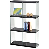 ACME Furniture 92182 Baxter Bookcase, Black & Clear Glass