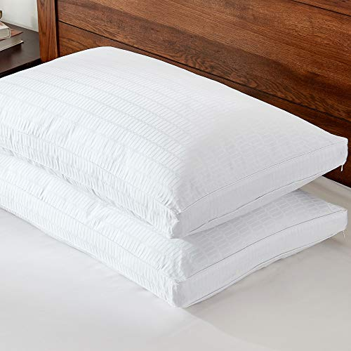 (Basic Beyond Goose Down Feather Pillows with Cases - 2 Pack Luxury Hotel Gusseted Bed Pillows for Sleeping and 2 Pack 500TC Cotton Pillow Cases, YKK Zipper, Queen Size)