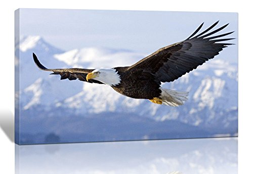 Spirit Up Art One Set Modern Giclee Prints Artwork Flying Eagle Picture Print to Photo Printed Paintings on Stretched and Framed Canvas Wall Art Decor for Home Office Decorations 12 ()