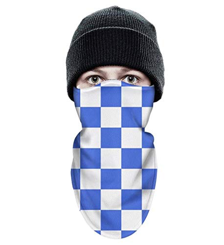 Floowyerion Unisex Checkered Blue White Squares Aesthetic Wind-Resistant Face Mask Tough Headwear Ski Mask ()
