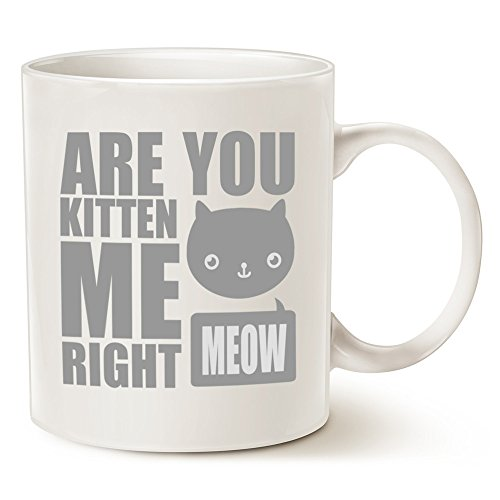 [MAUAG Funny Cat Coffee Mugs - Fun Are You Kitten Me Right Meow - Best Cat Lover Gifts Cute Porcelain Cup, White 11 Oz by] (Cute Halloween Names For Kittens)