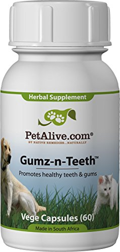 PetAlive Gumz-n-Teeth for Healthy Pet Gums and Teeth (60 Caps)
