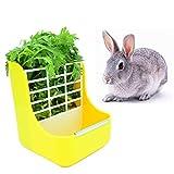 sxbest Rabbit Feeders Hay Food Bin Feeder,Food Hay Feeder for Guinea Pig,Rabbit,Indoor Hay Feeder for Guinea Pig,Rabbit, Chinchilla,Feeder Bowls Use for Grass & Food