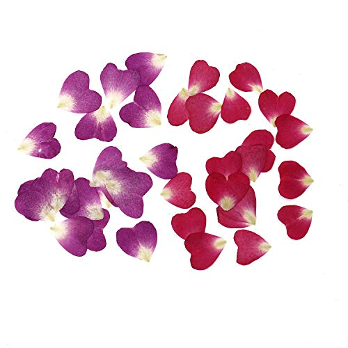 Monrocco 60Pcs Real Dried Flower Heart Shaped Purple & Red Rose Petal Pressed Flower Scrapbooking Embellishments for Jewelry Making Accessories
