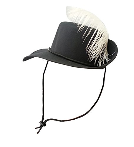 three-musketeers-hat-musketeer-style-black-hat-with-white-feather