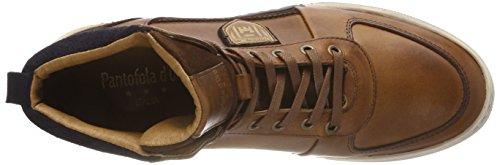 Jcu Frederico Braun Uomo Pantofola Mid Shell Hohe d'Oro Herren Sneaker Tortoise fZfq4Ewvnx
