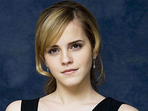 Gabriela 19inch x 14inch Emma Watson This Is the End The Circle The Perks of Being a Wallflower Noah Waterproof Poster (Bathroom, Outdoors wherever you like)