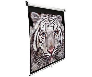 Elite Screens 100IN DIAG MANUAL PULL-DOWN WHITE 16:9 49X87IN CASE EXTRA . . . (132048) (75 Inch Projector Screen)