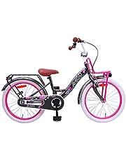 Amigo Bloom - Kinderfiets 20 inch - Voor meisjes van 5 tot 9 jaar - Met V-brake, terugtraprem, fietsbel, voordrager, fietsstandaard en verlichting - Grijs
