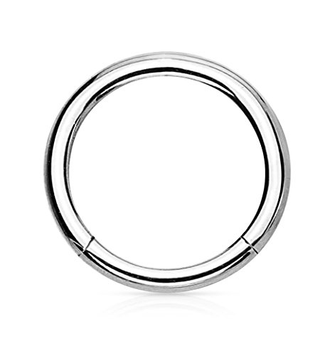 Forbidden Body Jewelry 16G 10mm Titanium Hinged Seamless Body Piercing Hoop