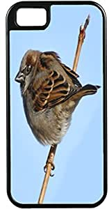 Blueberry For Iphone 5C Case Cover Brown Bird on a branch With blue sky background - Ideal Gift