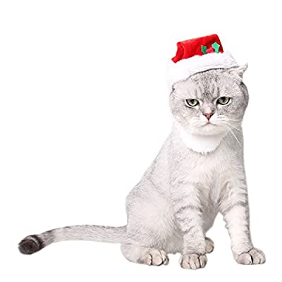 Mummumi Dog Holiday and Christmas Hat, Puppy Dog Santa Hat Costume Christmas Collection Pet Accessory For Cat Rabbit Hamster Guinea Pig, Small, Red
