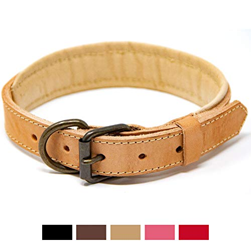 Leather Large Tan (Logical Leather Padded Dog Collar - Best Full Grain Heavy Duty Genuine Leather Collar - Tan - Medium)