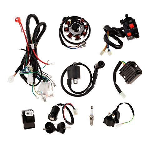 Homyl Complete Electric Stator Engine Wiring Harness Loom CDI Coil for 125cc-250cc Quad Dirt Bike ATV Buggy Go Karts 4 Wheelers: