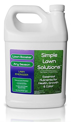 Commercial Gallon Lawn Energizer Nutrients - Grass Micronutrient Booster with Nitrogen, Iron - Natural Liquid Turf Spray Concentrated Fertilizer- Any Grass Type - Simple Lawn Solutions (1 Gallon)