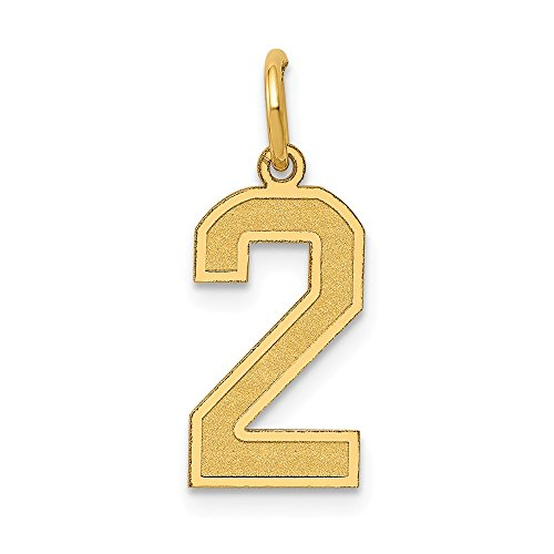 Satin Number 2 Charm - JewelrySuperMart Collection 14k Yellow Gold Number Two Charm Pendant with Satin Finish - # 2 - Yellow Gold - Medium