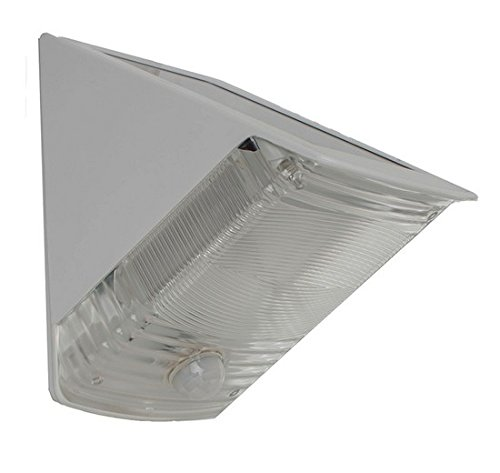 Solar Motion Activated Wedge Light