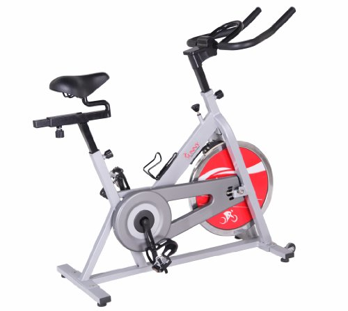 Sunny Health & Fitness SF-B1001S Indoor Cycling Bike, Silver